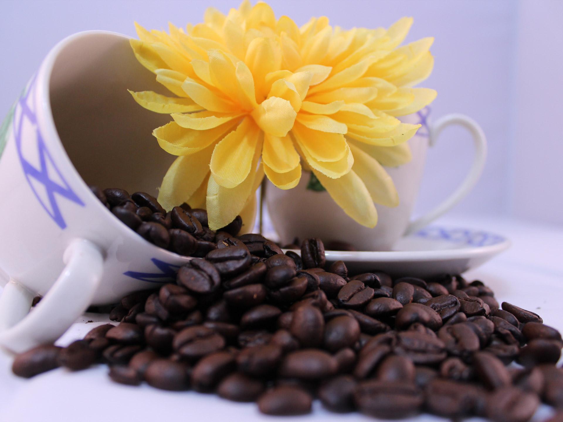 Hoe gezond is koffie nu eigenlijk?