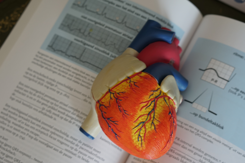 Diverse tips bij het verlagen van de bloeddruk